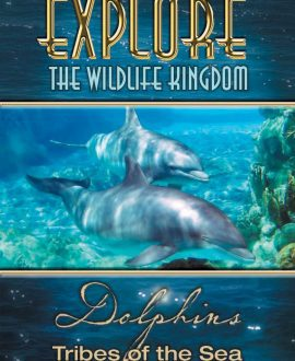 dolphins dvd cover