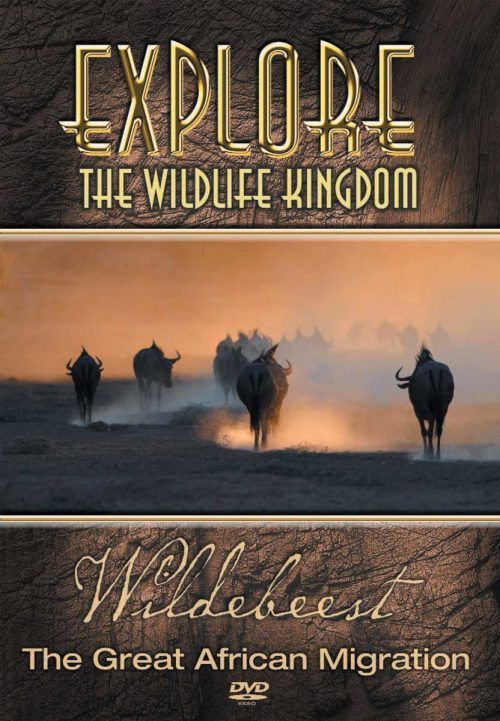 wildebeest dvd cover