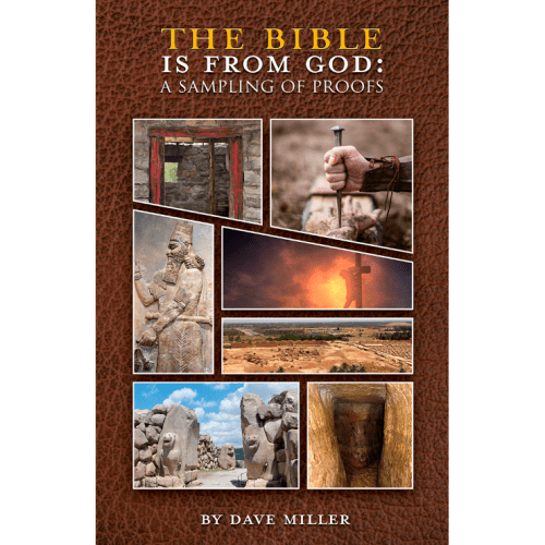 The Bible Is From God Book