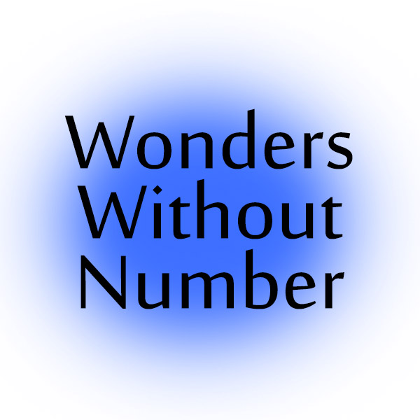 Wonders Without Number Video Series David Rives
