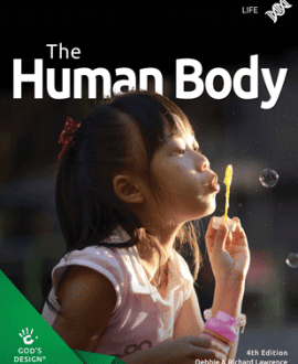The Human Body- Gods Design | MB