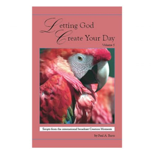 Letting God Create Your Day Vol 5   CM