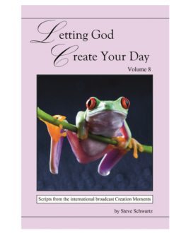 Letting God Create Your Day - Vol. 8| CM