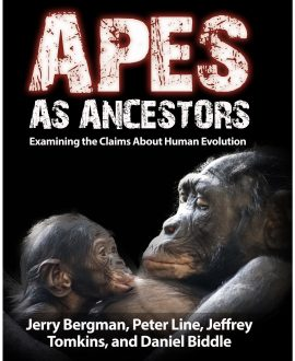 Apes As Ancestors Book