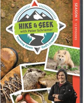 Hike & Seek - Tracking Down God's Creation | AIG
